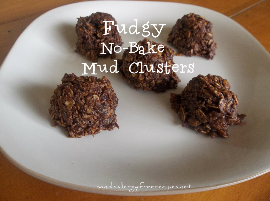 Fudgy No-Bake Mud Clusters