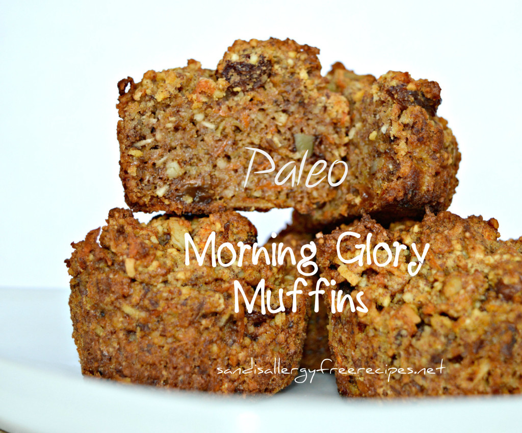 Paleo Morning Glory Muffins from Sandi's Allergy-Free Recipes.
