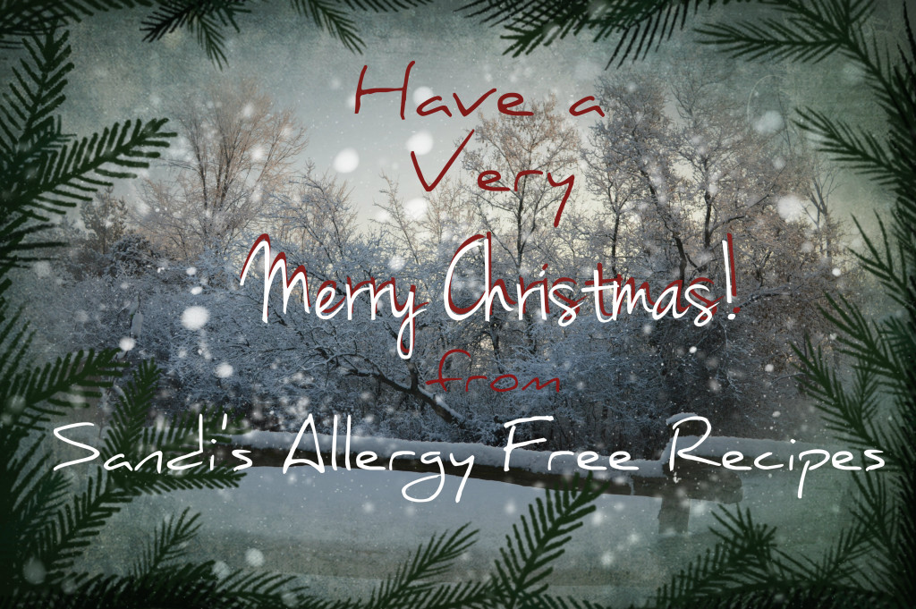 Merry Christmas Sandi's Allergy Free